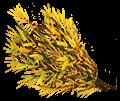 Rooibos Leaf (Redbush)